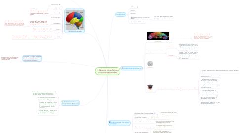 Mind Map: Características físicas y divisiones del cerebro