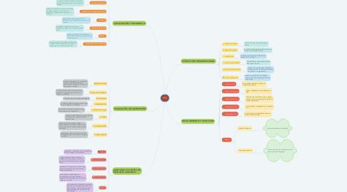Mind Map: RRII