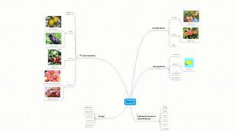 Mind Map: Фрукты