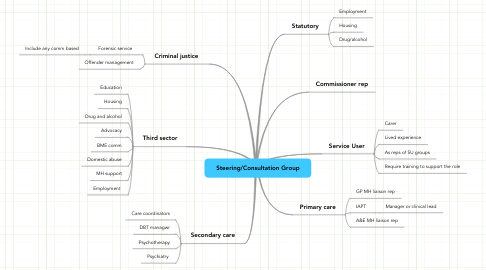 Mind Map: Steering/Consultation Group
