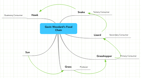 Mind Map: Gavin Woodard's Food Chain