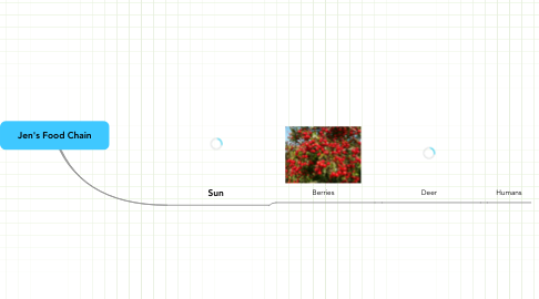 Mind Map: Jen's Food Chain