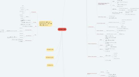 Mind Map: KHÁNG SINH