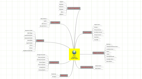 Mind Map: Mark Repsher's Vocab Project
