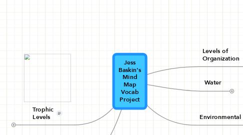 Mind Map: Jess Baskin's Mind Map Vocab Project
