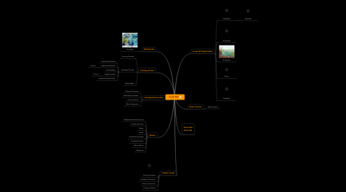 Mind Map: Vocab Map