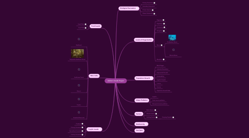 Mind Map: Aislinn's Vocab Project