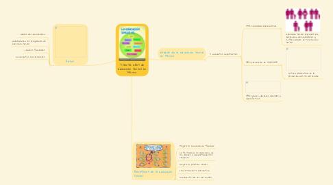 Mind Map: Treinta años de educación sexual en México.