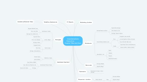 Mind Map: Coordenadoria Executiva-           Suzana/ Marcelo/Ivan