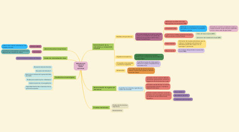 Mind Map: Técnicas culinarias