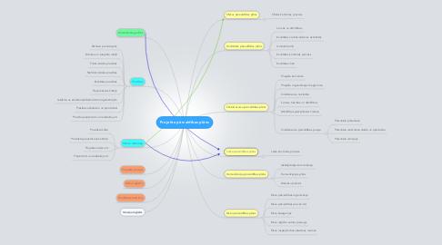 Mind Map: Projekta pārvaldības plāns