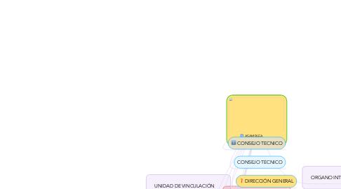 Mind Map: ASAMBLEA GENERAL IMSS