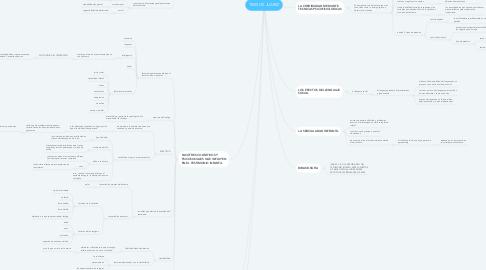 Mind Map: TESIS DE JUAREZ