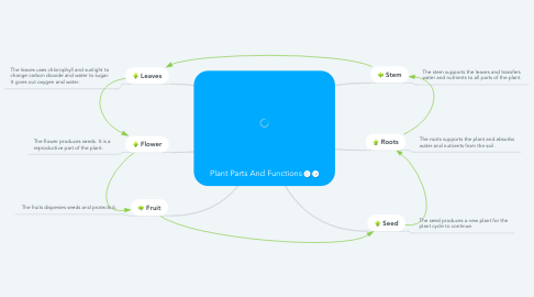 Mind Map: Plant Parts And Functions