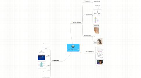 Mind Map: виды информационных моделей