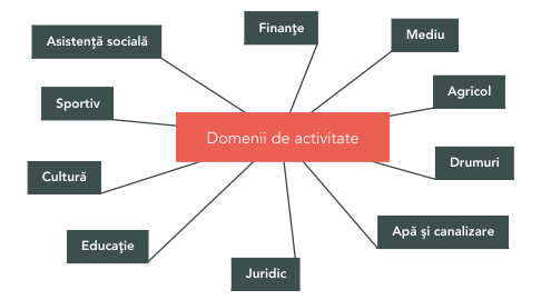 Mind Map: Domenii de activitate