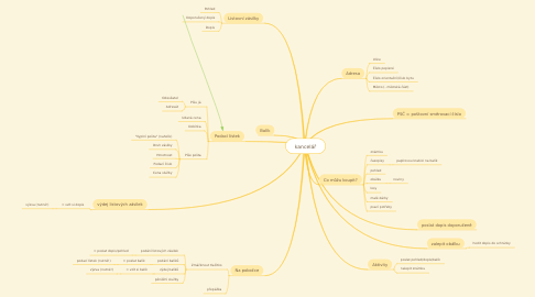 Mind Map: kancelář