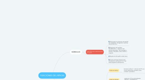 Mind Map: FUNCIONES DEL RIÑON