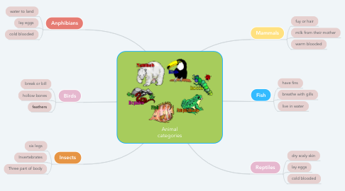 Mind Map: Animal categories