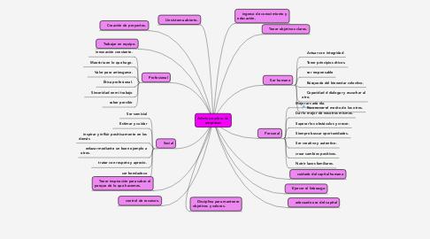 Mind Map: Administradora de empresas