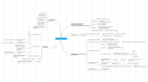 "Mind Map: MAESTRO ""SER INTEGRAL"""