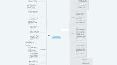 Mind Map: Empremdimiento
