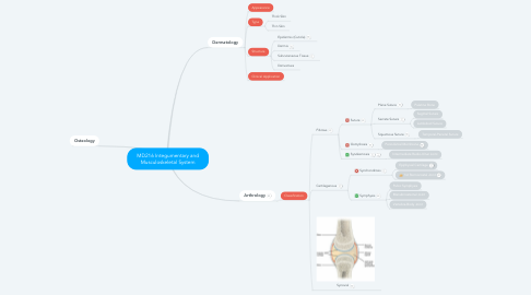 Mind Map: MD216 Integumentary and Musculoskeletal System