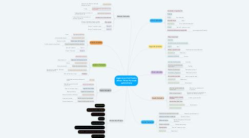 Mind Map: Ingeniería Civil Carlos Adrian Pérez Hurtado A01351104