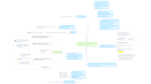 Mind Map: SISTEMA TEGUMENTARIO
