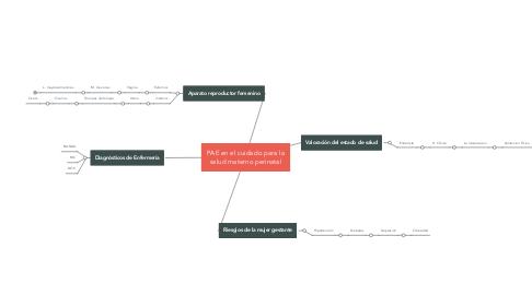 Mind Map: PAE en el cuidado para la salud materno perinatal