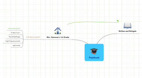 Mind Map: Practicum