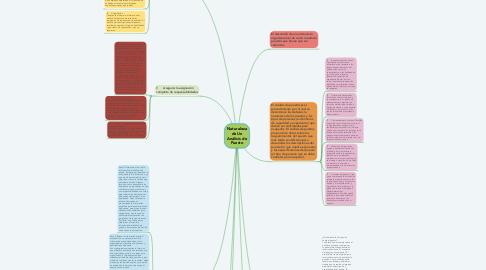 Mind Map: Naturaleza de Un Análisis de Puesto
