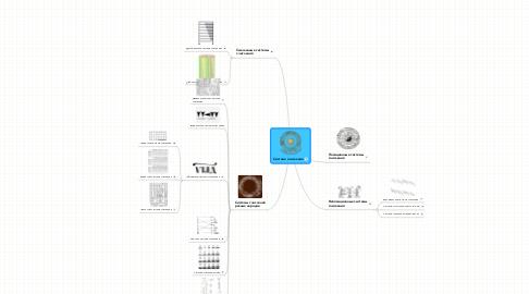 Mind Map: Система счисления
