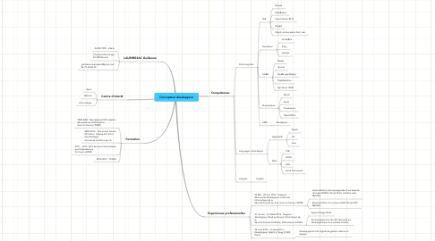 Mind Map: Concepteur développeur