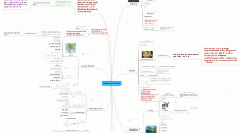 Mind Map: URLAUBSREISE DE LUXE
