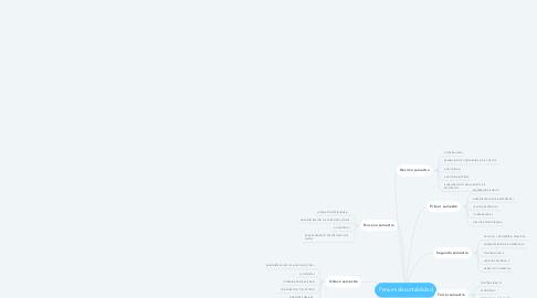 Mind Map: Pensum de contabilidad