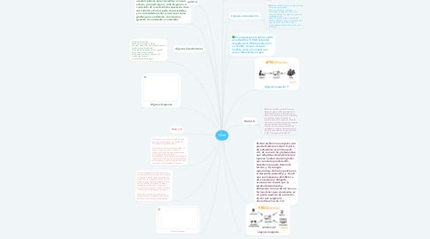 Mind Map: Web