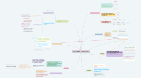 Mind Map: BIOELEMENTOS Y BIOMOLECULAS