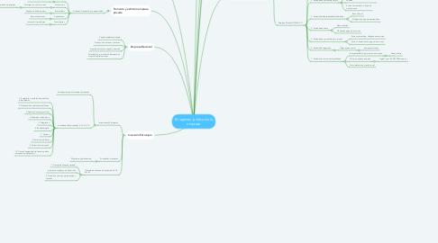 Mind Map: El régimen jurídico de la empresa