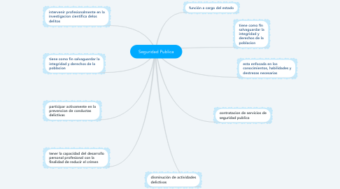 Mind Map: Seguridad Publica