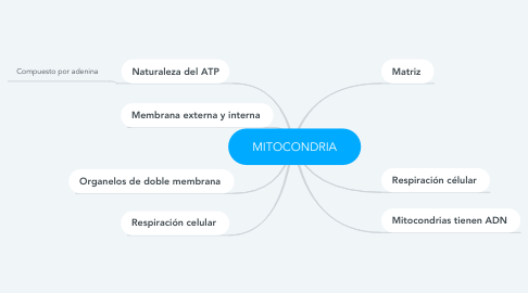 Mind Map: MITOCONDRIA