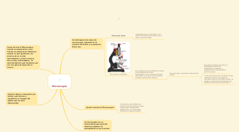 Mind Map: Microscopio
