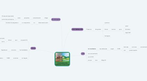 Mind Map: CONTAMINACIÓN AMBIENTAL EN BOGOTA