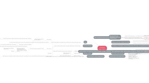Mind Map: El sistema tegumentario.