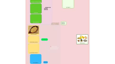 Mind Map: CLASIFICACIÓN DE LOS LÍPIDOS