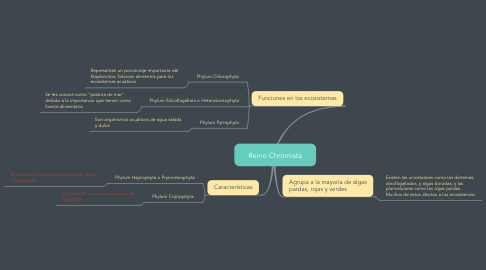 Mind Map: Reino Chromista