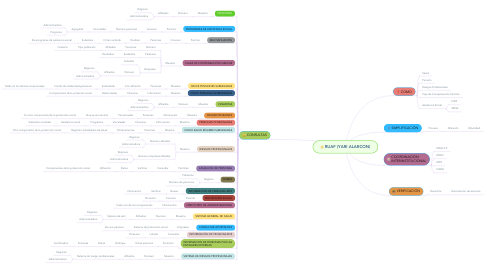 Mind Map: RUAF (YARI ALARCON)