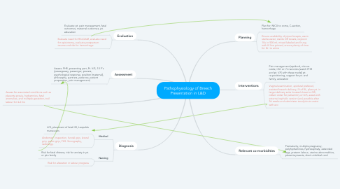 Mind Map: Pathophysiology of Breech Presentation in L&D