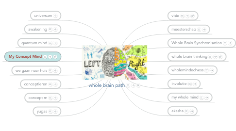 Mind Map: whole brain path