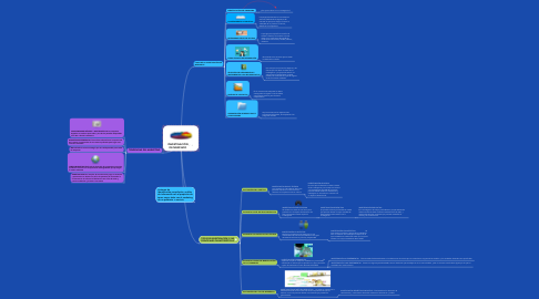 Mind Map: INVESTIGACIÓN DE MERCADO